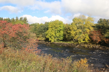 River Tees, between Low Force and High Force