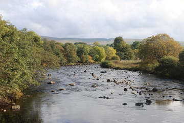 River Tees with a `hush